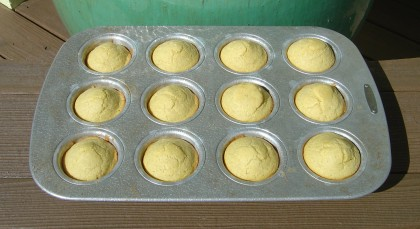A pan of corn muffins just out of the oven