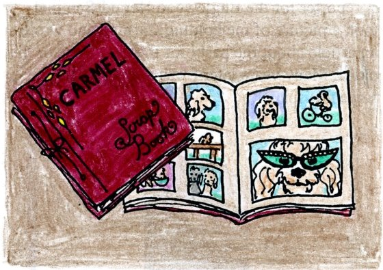 my drawing of Carmel's scrapbook, from my 'My Dog Carmel' book