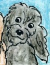 a small image of Smokey, Carmel's friend