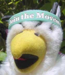 an 'Affordable Textbooks - Join the Movement' wristband being modeled by my Reed College griffin